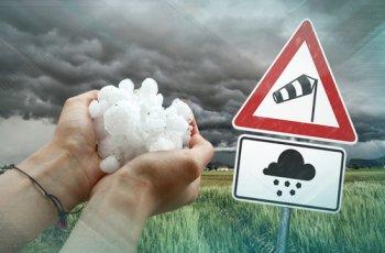 Буря нанесе тежки поражения в Плевен, Кнежа и Бяла Слатина