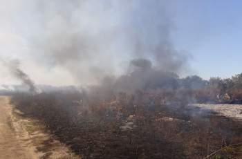 Първо ВИДЕО от големия пожар край Околовръстното