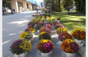 Хоби и здраве – акцент на есенните изложби в панаира