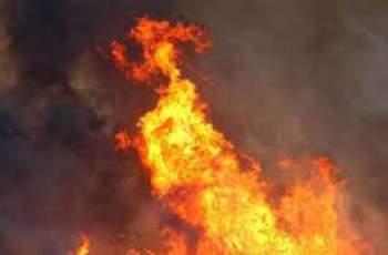 Нов пожар край Пловдив! Огън избухна до бензиностанция