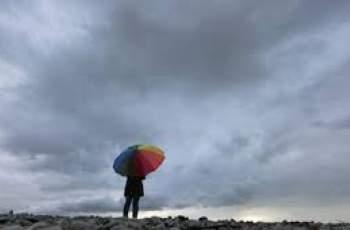 Времето: поучителна история за червеи или облачно със слаб дъжд