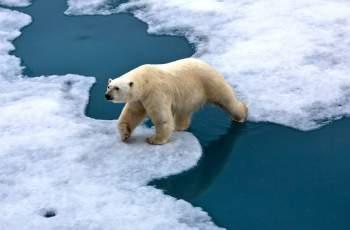 Учени ще се опитат да охладят Земята догодина