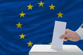 Уебсайт ни показва как да гласуваме на евроизборите