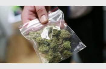 """""""Колекционер"""" на канабис ще дава показания за притежаваната дрога"""