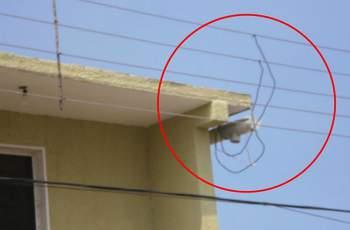 Арест за крадец на ток в Асеновград