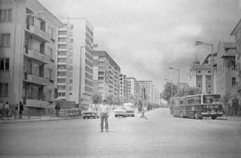 Вижте Хасково без автомобили
