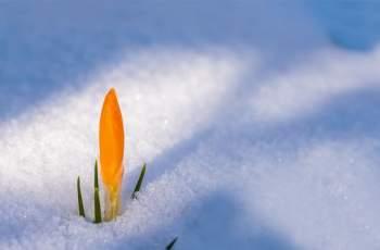 Зимата се връща, задават се студ и сняг