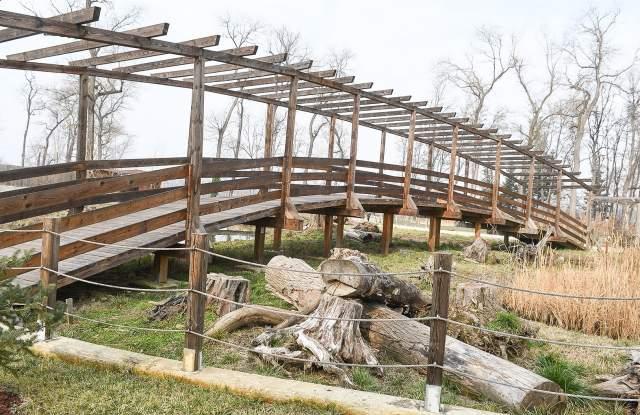 Снимка: Провал! Зоологическата градина остава без животни