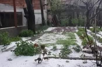 Кабаиванов свика Кризисния щаб заради градушката в Подбалкана