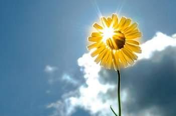 Виц на деня: Защо грее слънцето?