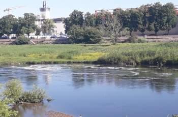 Тревога! Гъста бяла пяна потече по река Марица СНИМКИ