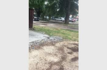 Пловдивчанка се натъкна на опасна находка в Кючука