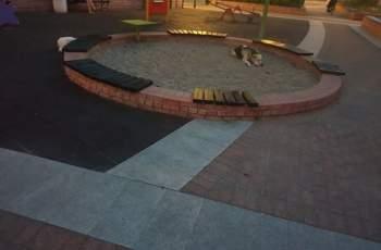 Кучета нападнаха дете на площадка