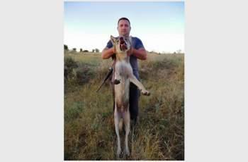 Фермер гръмна 70-килограмов вълк единак СНИМКИ 18+