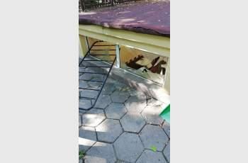 Вандали посегнаха на тоалетната в Дондуковата градина