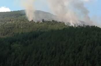 Голям горски пожар бушува край Реброво СНИМКИ