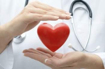 Кардиолог разкри 7-те топ храни срещу атеросклероза