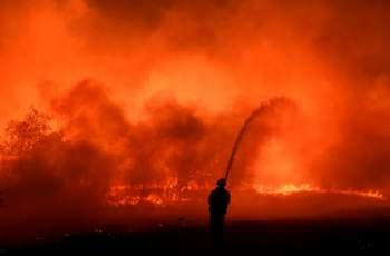 Екстремална опасност от пожари в Пазарджишко