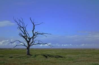 Суша и наводнения у нас заради глобалното затопляне