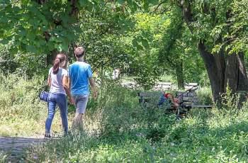 "Парк до хотел ""Санкт Петербург"" стана джунгла"