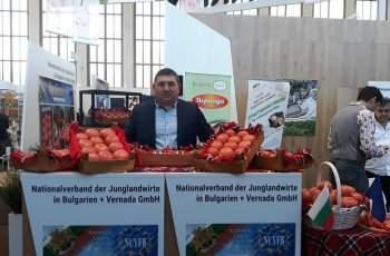 Царят на розовия домат напуска България
