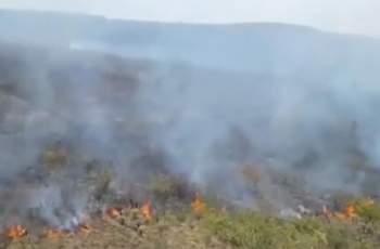 Пламна и вилната зона на Долно Вършило