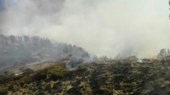 Военните готови и утре да гасят пожара в Рила