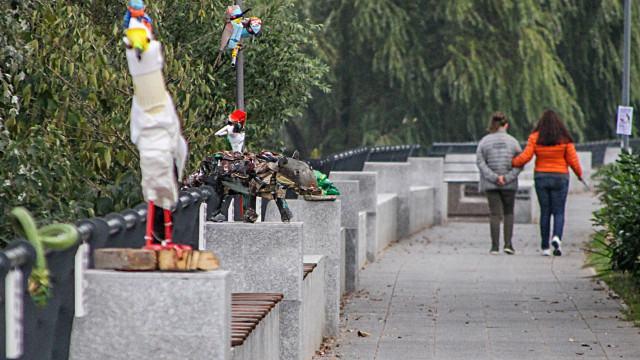 Птици и змии от отпадъци оживяха край Марица СНИМКИ - 0