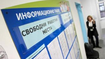 Всеки шести на борсата в Пловдивско е педагог или икономист