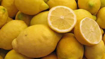 Лимоните пробиват цената от 5 лева килото! Ето къде