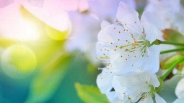 Четири зодии се къпят в любов и пари през април
