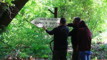 """Жителите на Белащица почистиха парк """"Чинаровата гора"""""""