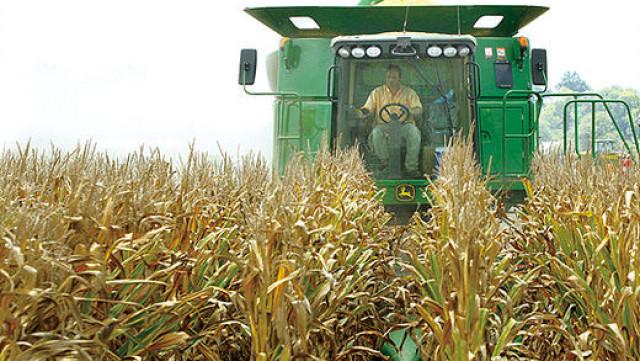 Кредити с 2% лихва за зърнопроизводители