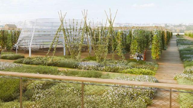 Най-голямата градска ферма в света е върху покрив - 6