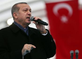 Ердоган призова турците в Европа да имат поне по пет деца