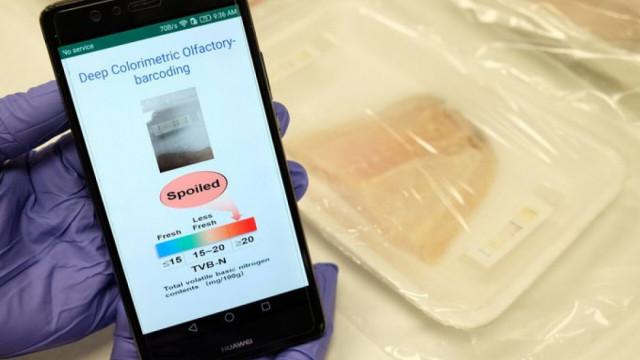 Като бозайниците: Електронен нос открива зрели плодове и развалено месо - 1