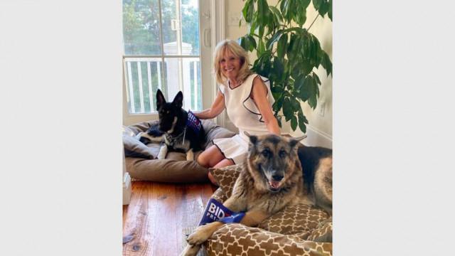 Ако искаш приятел в Белия дом, вземи си куче - 4