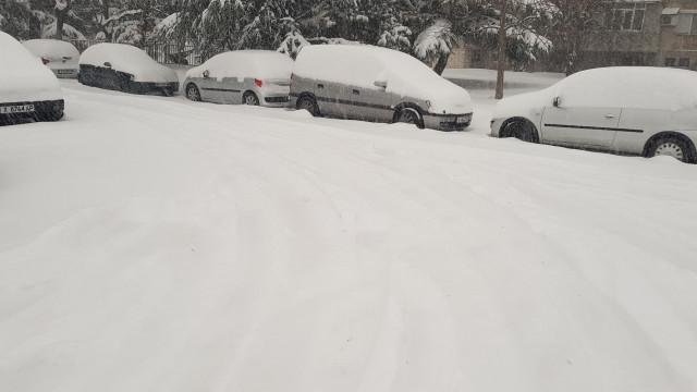 40 см сняг в Тополовград, едва 6 см в Любимец