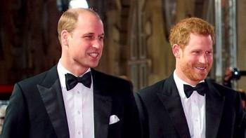 Драма в Бъкингам: Принц Уилям бесен на брат си Хари