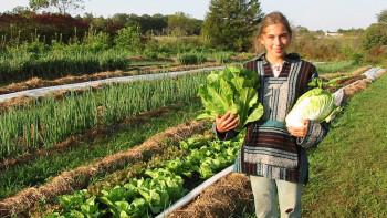 Насочват 458 млн. евро за 4 атрактивни мерки в земеделския сектор