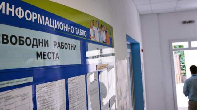 """Работници по схемата """"Заетост за теб"""" набират фирми в Хасково"""