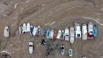 Ердоган: Ще се справим с екологичния проблем в Мраморно и Черно море