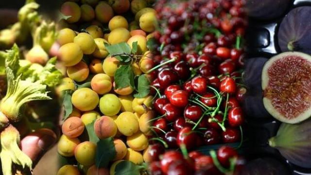 Турция е рекордьор на лешници, череши, смокини, кайсии и дюли