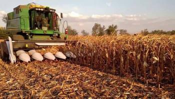 Агропрогноза: Лятото не иска да си тръгва, идеално време за есенната сеитба