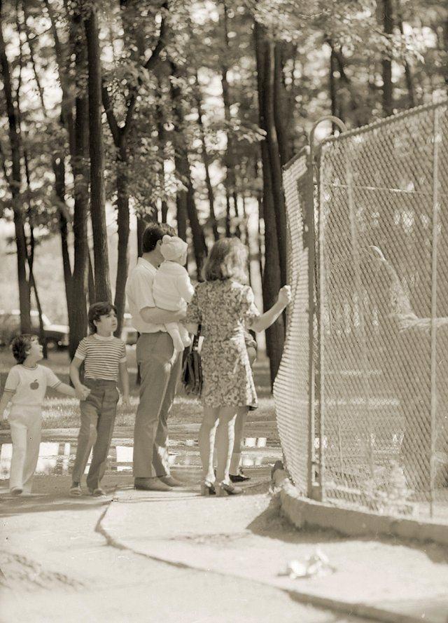 """Зоокът в лесопарк """"Отдих и култура"""" (Царския остров), 1974 г."""
